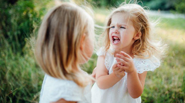 Waarom broers en zussen elkaar soms in de haren vliegen